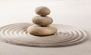 natural balance with zen contemplation